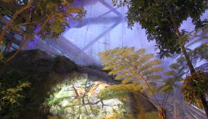 NO Botanika Ausstellung Winterlichter (c) Botanika Bremen