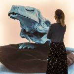 Naturalia Artistica (c) Anja Schindler, VG Bild-Kunst, Bonn 2019, Foto Volker Beinhorn