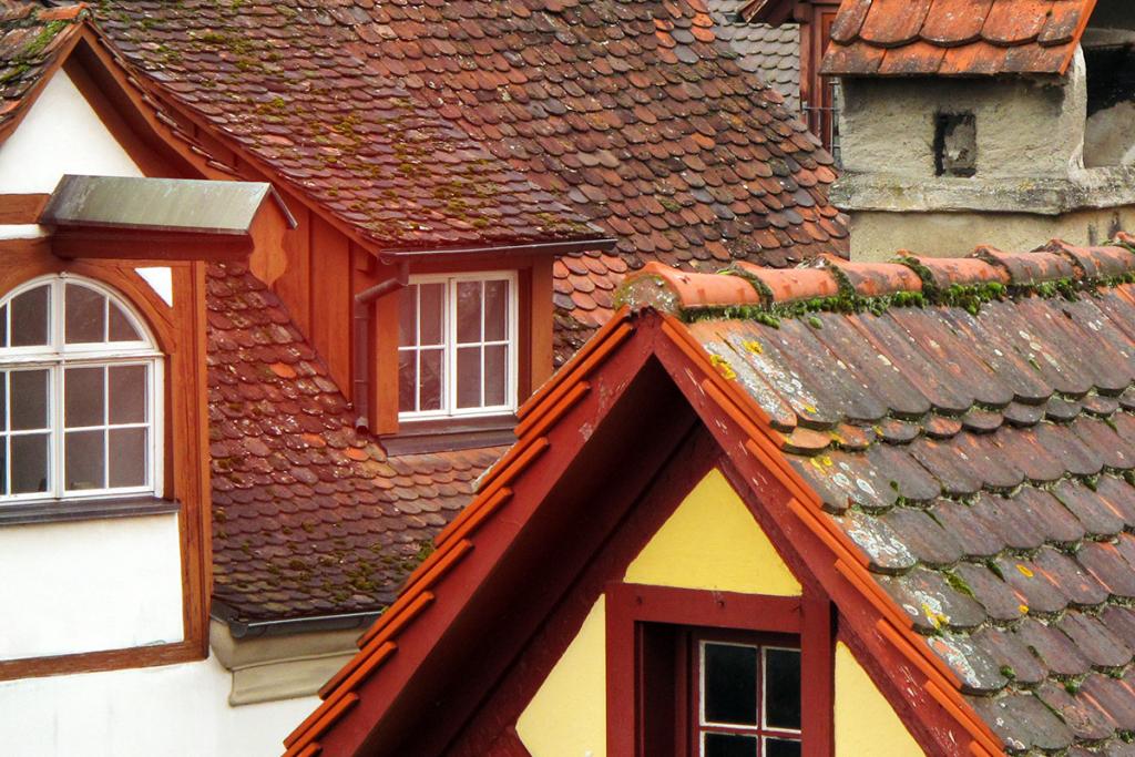Blick über die Dächer von älteren Häusern.